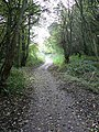 Disused railway incline - geograph.org.uk - 71060.jpg
