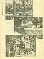 Dobutsugaku zasshi (1912) (20975340532).jpg