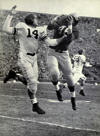 1950 Michigan Wolverines football team - Don Peterson catches ball