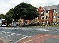 Dowson Road - geograph.org.uk - 1346746.jpg