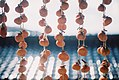 Dried persimmon hung on strings.jpg