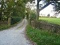 Driveway near Dalebrook House - geograph.org.uk - 978037.jpg