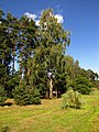 Druvciems - panoramio (19).jpg