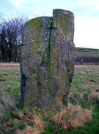 Cattle rubbing stone - The Drybridge standing stone that is not made from a suitable stone to have been installed as a rubbing stone.