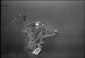 ETH-BIB-Brissago, Inseln, Isole di Brissago-LBS H1-013010.tif
