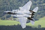 Eagle in mach loop, Wales, UK (8000183684).jpg