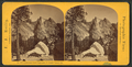 Earthquake Rock fragments, Yo Semite Valley, Cal, by Reilly, John James, 1839-1894.png