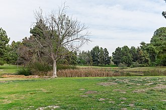 El Dorado Park, Long Beach, California - Horseshoe lake in El Dorado Regional Park