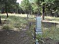 Elkhorn ghost town cemetery 17.jpg