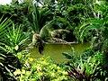 Embalse Dos Bocas de Utuado, Puerto Rico - panoramio.jpg
