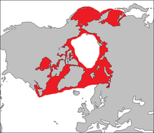 Distribution of bearded seal