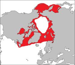 Distribución de la foca barbuda