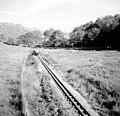 Eskdale Railway - geograph.org.uk - 993847.jpg