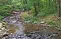 Esopus Creek headwaters at Giant Ledge Stream confluence, Oliverea, NY.jpg