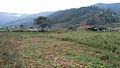 Espacio productivo, sector Mesa Arriba, estado Trujillo. Plan Pueblo a Pueblo4.jpg