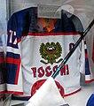 Evgeni Malkin jersey.jpg