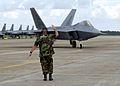 F-22 Raptor parking - 030930-F-9999W-002.jpg
