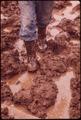 FEET OF FARMER JOHN DOLEZAL SLOGGING THROUGH MUD ON DOLEZAL'S FARM NEAR BEE, NEBRASKA. UNUSUALLY HEAVY RAINFALL THIS... - NARA - 547422.tif
