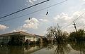 FEMA - 16109 - Photograph by Bob McMillan taken on 09-16-2005 in Louisiana.jpg