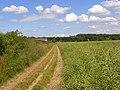 Farmland and footpath, Bisham - geograph.org.uk - 856555.jpg
