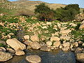 Fatzael Springs and water system 049.JPG