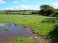 Field at Ladydown - geograph.org.uk - 228627.jpg