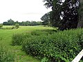 Field seen from the churchyard at All Saints Church, Hilborough, Norfolk - geograph.org.uk - 854666.jpg