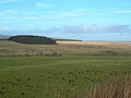 Fields, Wood and Moor - geograph.org.uk - 339727.jpg