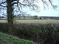 Fields near Minety - geograph.org.uk - 339931.jpg