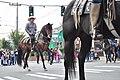 Fiestas Patrias Parade, South Park, Seattle, 2017 - 278 - horses.jpg