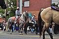 Fiestas Patrias Parade, South Park, Seattle, 2017 - 279 - horses.jpg