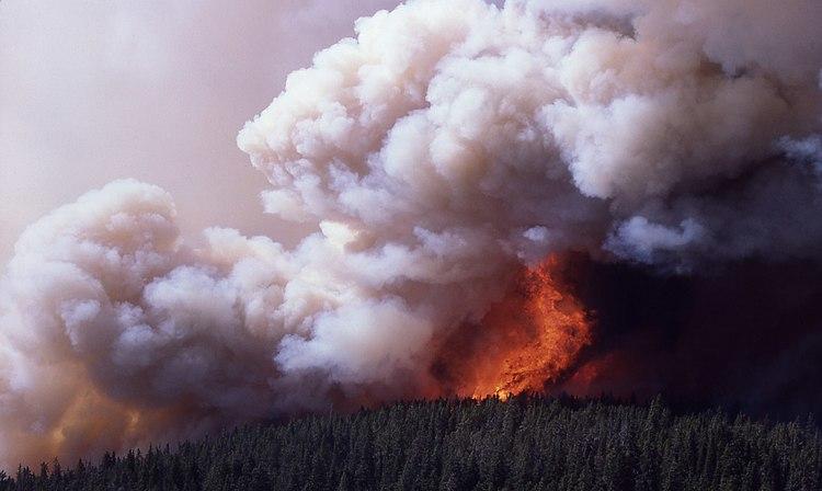 Firestorm Mirror Plateu