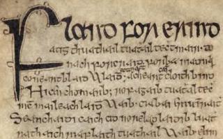 Flann Sinna High King of Ireland
