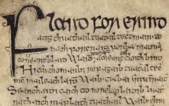 Flann Sinna - Opening lines of Máel Mura Othna's poem Flann for Érinn (Flann over Ireland), from the Great Book of Lecan (RIA MS 23 P 2), 296v