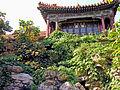 Flickr - archer10 (Dennis) - China-6262.jpg