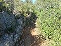 Footpath PR.1 Section 14 Paderne Castle Route 8 November 2015.JPG