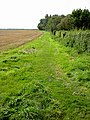 Footpath along a field boundary, Peterstow - geograph.org.uk - 963818.jpg