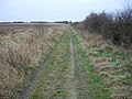 Footpath along track - geograph.org.uk - 1161119.jpg