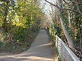 Footpath to St Peter's Church, Bexhill-on-Sea - geograph.org.uk - 695805.jpg