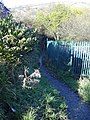 Footpath to Swinnel Brook - geograph.org.uk - 1044133.jpg
