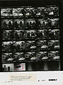 Ford A3081 NLGRF photo contact sheet (1975-02-04)(Gerald Ford Library).jpg