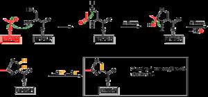 Epothilone - Figure 4