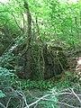 Former quarry structure off Heol Goch - geograph.org.uk - 2486696.jpg