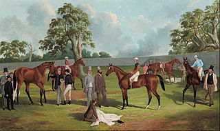Group in the Dowling Forest Racecourse enclosure, Ballarat, 1863