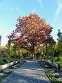 Friedhof Melaten Bestattungsgärten Flur 94 4.jpg