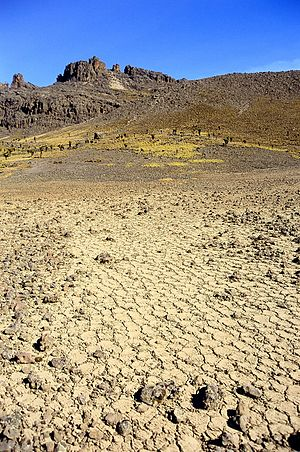 Periglaciation - A blockfield around 4000m on Mount Kenya