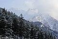 Frozen peaks of Swat,Pakistan..jpg