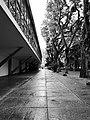 Fuga do Ibirapuera.jpg