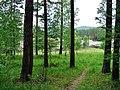 G. Miass, Chelyabinskaya oblast', Russia - panoramio (179).jpg
