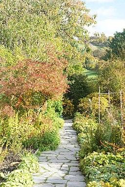 Garden at Hill Top, Near Sawrey - geograph.org.uk - 1548626